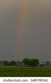 Rainbow over a field at countryside in the evening