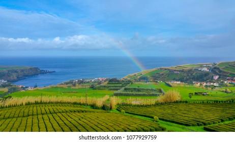 Rainbow over the Gorreana tea plantation Azores Sao Miguel island