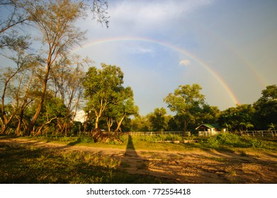 Rainbow over rural ranch in woody area in Borneo.