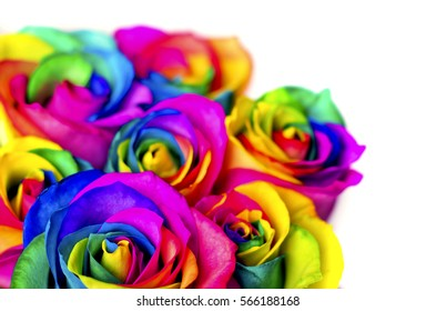 Rainbow roses on white bricks and wood background. Postcard for Valentine's and Mother's day.