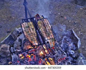 Rainbow Trout Being Grilled Over Campfire
