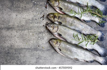 Rainbow trouts on a stone grey board with copy space for text - Shutterstock ID 457059592