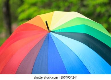 Rainbow umbrella on the green background