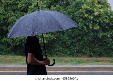 Raindrop on black umbrella with tree background. Raining season. Rain concept