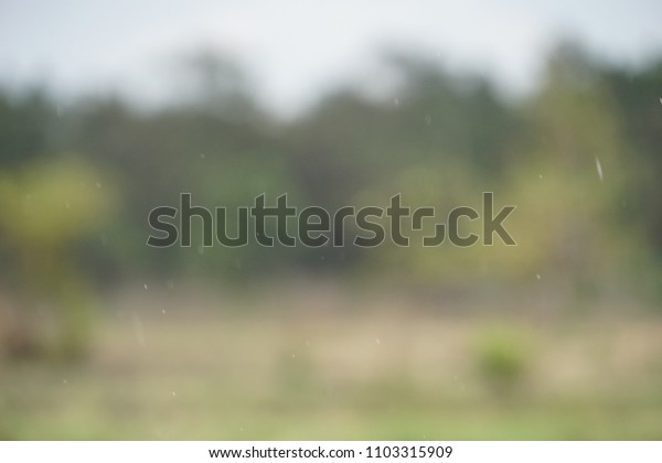 raindrops or drizzle for beginning of rainfall, blurring background