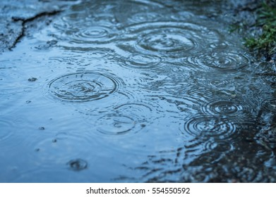 raindrops falling in a puddle background