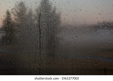 Raindrops on window looking outside