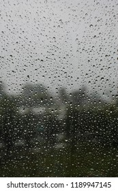 Raindrops on the window and nature on the background. Natural pattern with drops of water on the glass.