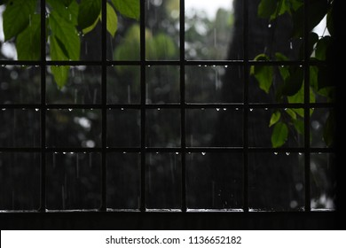 Raindrops of water on a iron protection grill isolated unique photograph