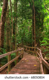 rainforest board walk in the Barron Gorge National Park, Queensland, Australia
