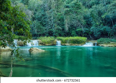 Rainforest landscape with river and small waterfalls in Belize