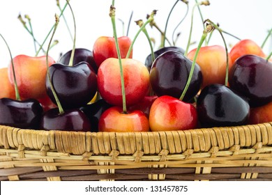 Rainier and black cherries sitting in a basket isolated on a white background.