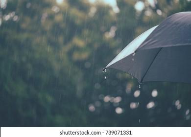 Raining And Black Umbrella