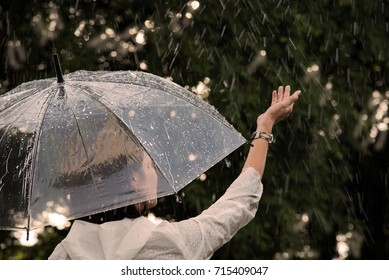 In raining day, woman open umbrella,stand in garden rise hand touch falling rain, feel happy and have a warmth. It have romantic feeling.