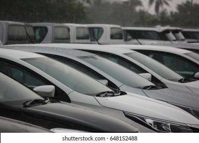 raining time in car park