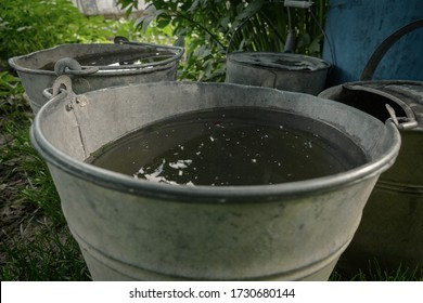 Rainwater collected in bucket for watering garden and plants. Saving rain water in barrel in the garden. Environmentally friendly gardening. Water filled pail. Eco-friendly concept