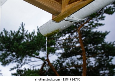 Rainwater dripping down from a waterspout.