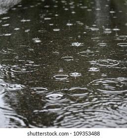 Rainy day, Rain and water ripples