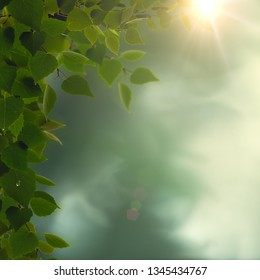 Rainy morning. Abstract seasonal backgrounds with green foliage, dew and sun beam