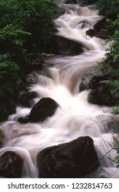 Rainy mountain stream
