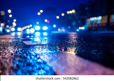 Rainy night in the big city, the cars headlights shine through the mist. Close up view from the level of the dividing line, image in the blue tones