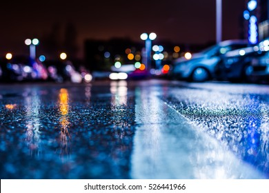 Rainy night in the parking shopping mall, rows of parked cars. Close up view from the level of the dividing line, image in the blue tones