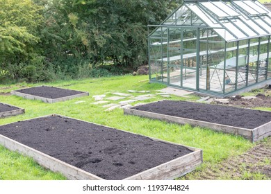Raised beds prepared ready for planting in a UK allotment next to an empty glass greenhouse