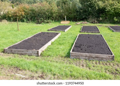 Raised beds prepared ready for planting in a UK allotment