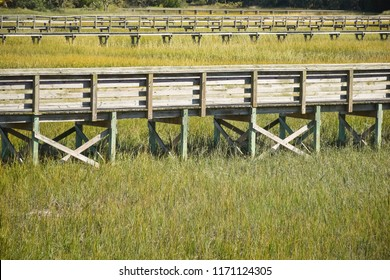 A raised boardwalk through a marsh