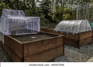 Raised gardening beds beside a parking lot showing insect/ bird netting, raised bed, trellis, solar plant protectors.