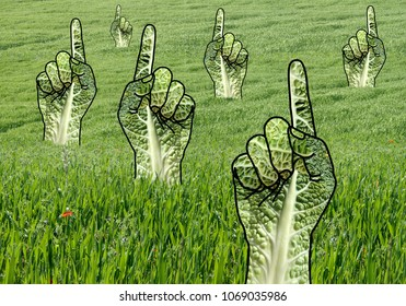 Raised Green Pointing Hands in Grass Field