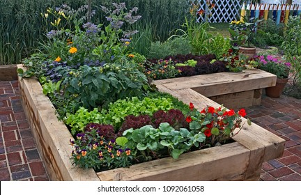 Raised vegetable garden with Borage, tomatoes, lettuce and pansies in a tiled space