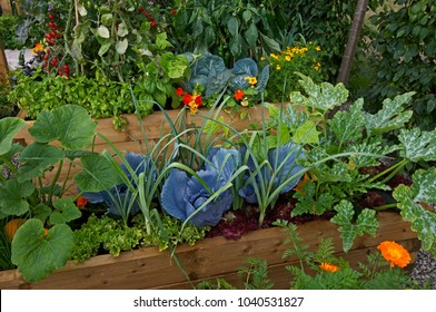 Raised vegetable wooden containers with selection of vegetablesin and flowers in an allotment garden