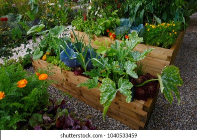 Raised vegetable wooden containers with selection of vegetablesin and flowers an allotment garden