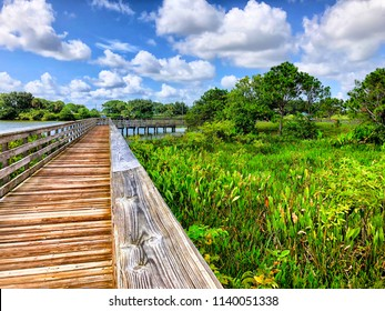raised wooden boardwalk in the marsh
