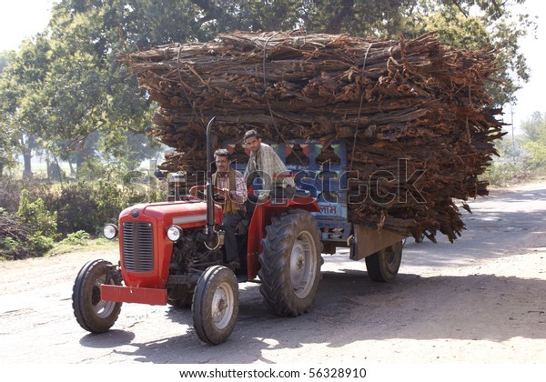 RAJASTHAN, INDIA - FEB. 24: timber transport with tractor on country road on Feb. 24, 2010 in Rajasthan, India.