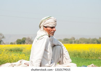 RAJASTHAN, INDIA - FEBRUARY 5, 2011: Agricultural worker on a cart in the countryside of Rajasthan. Rajasthani people are known as some of the most colorful people in India.
