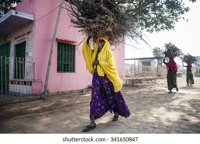 RAJASTHAN, INDIA - JANUARY 9, 2015: Indian women carrying brushwood on head on January 9, 2015 in Rajasthan, India