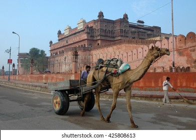 RAJASTHAN, INDIA - MARCH 03, 2006: A camel cart, rolling near Junagarh, Red Fort of Bikaner