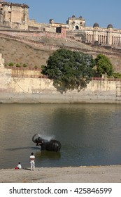 RAJASTHAN, INDIA - MARCH 03, 2006: Elephant in the lake in front of the Amber Fort, Jaipur