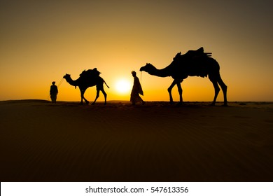 Two Camels Images, Stock Photos & Vectors | Shutterstock