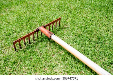 Rake lying on grass in the golf course.