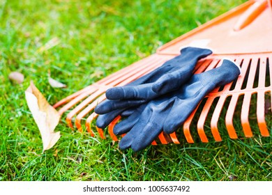 Rake and working gloves