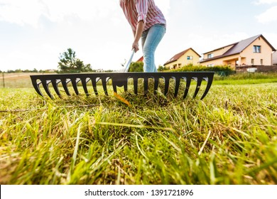 Raking leaves using rake. Person taking care of garden house yard grass. Agricultural, gardening equipment concept.