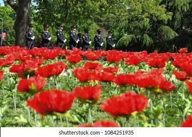 RALEIGH, NORTH CAROLINA, USA - MAY 1, 2018: NCSU WWI Remembrance Ceremony US Army Honor Guard