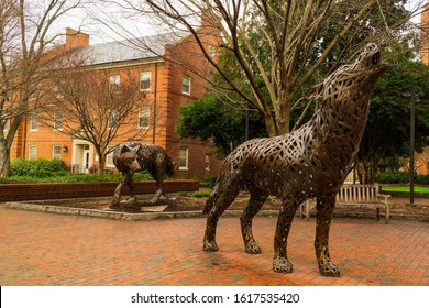 Raleigh,NC/USA-1/16/20: The North Carolina State University Wolfpack Statues.