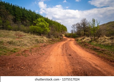 Rally path in forest. Road of old dirt rally track.