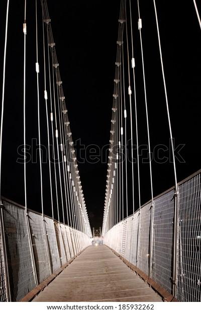 Ram Jhula Bridge, Rishikesh, India 2009