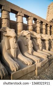 Ram sphinx headed statues at Karnak Temple, in the east bank of the Nile River, El-Karnak, Luxor, Egypt