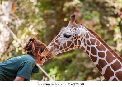 RAMAT GAN, ISRAEL. September 8, 2017. Unknown woman of the Ramat Gan Safari Zoological Center staff laughing as a young giraffe tickles her and licks her cheek. People communicating with wild animals.